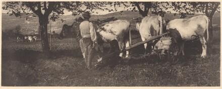 Ploughing Team
