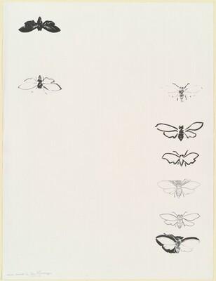Cicada [trial proof 1/2]