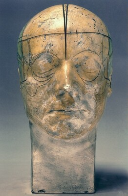 Gall's Bust IV, A Study in Winter