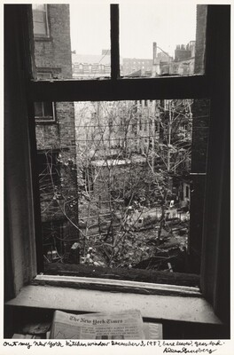 Out my New York kitchen window December 3, 1987, bare leaves, year end.