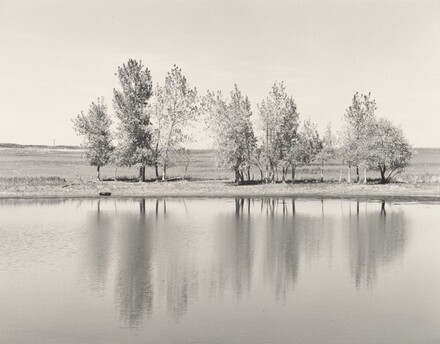 A farm pond about to be destroyed by earth-moving machinery, the north edge of Denver, Colorado