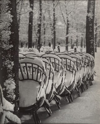 L'hiver au jardin du Luxembourg (Winter in the Luxembourg Gardens)