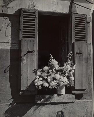 Fenêtre et fleurs (Window and Flowers)