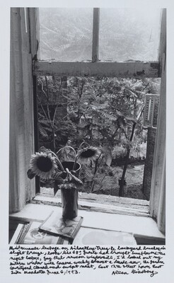 Midsummer leafage on Ailanthus Trees & backyard bushes in slight breeze, looks like 68°, guests had brought sunflowers the night before, gay club news on windowsill, I'd looked out my kitchen window with camera weekly almost a decade now, the garden courtyard cleaned and swept neat, East 12th street lower East Side Manhattan June 6, 1993.