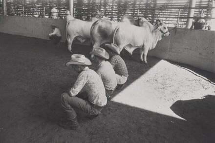 Texas State Fair, Dallas