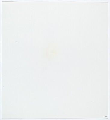 Stains: Egg White