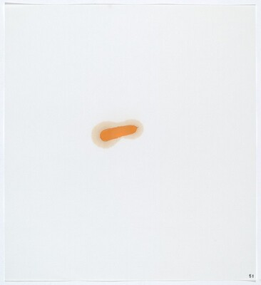 Stains: Oil Paint (Bellini Cad. Yellow Deep)