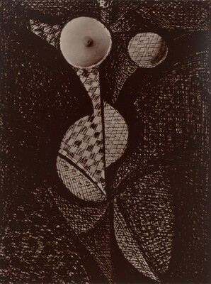 Femme-Fruit (Woman-Fruit), from Transmutations