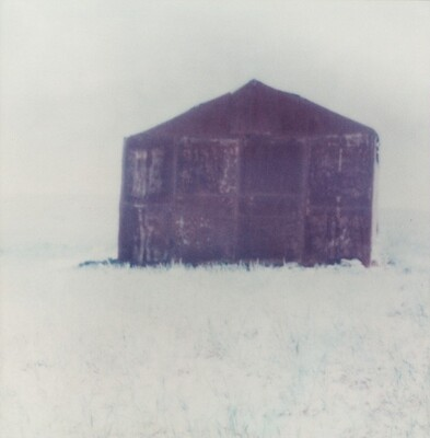 Untitled, from the series Outside