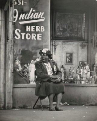 Indian Herb Store, Harlem, New York