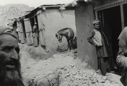 Teri Mangal, Pakistan