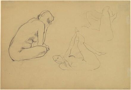 Studies of Female Nude [recto]