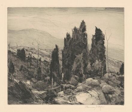 Spruce Land