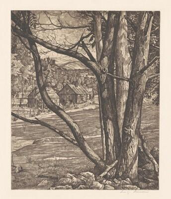 Tree Rhythm