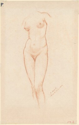Nude Female Torso