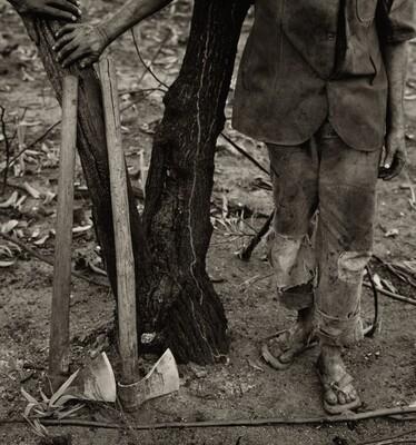 Mauro Ferreira das Neves (Legs and Tool), Grande Sertão Veredas National Park, Brazil