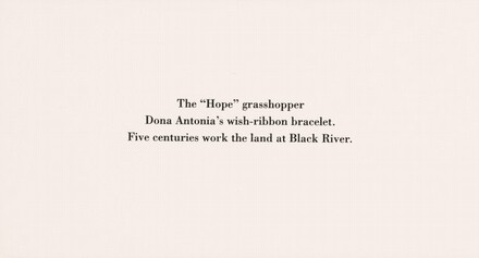 The Hope Grasshopper. Dona Antônia's Wish-Ribbon Bracelet. Five Centuries Work the Land at Black River.