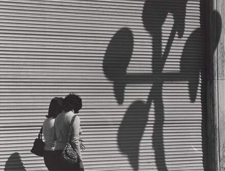 Dos Mujeres y la Gran Cortina con Sombras (Two Women, a Large Blind, and Shadows)
