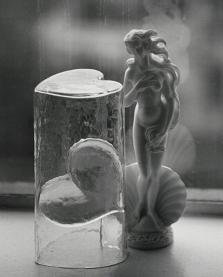 Venus, New York