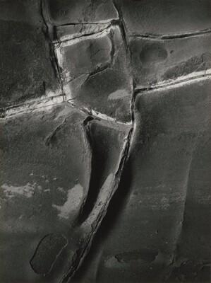 Devil's Spine, Coos Bay, Oregon