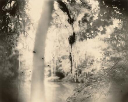 Deep South, Untitled (Three Drips)
