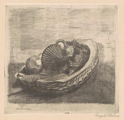 Le conchiglie [The Shells (in Petrucci's Study)]