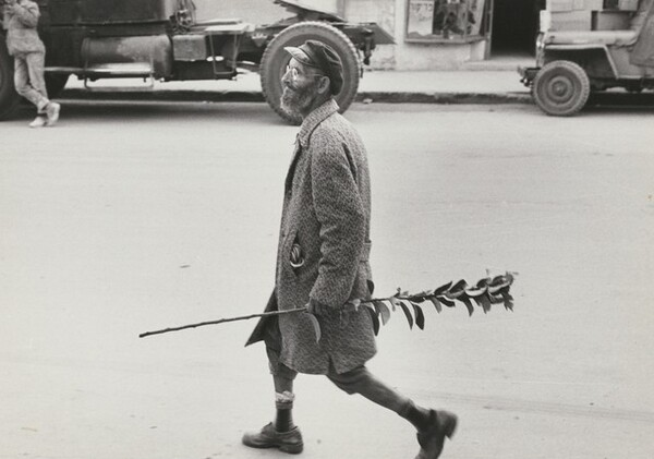 Be'er Sheva, a Moroccan Jew carries a holiday branch, Israel