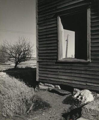 Abandoned House, Platte Valley, Nebraska