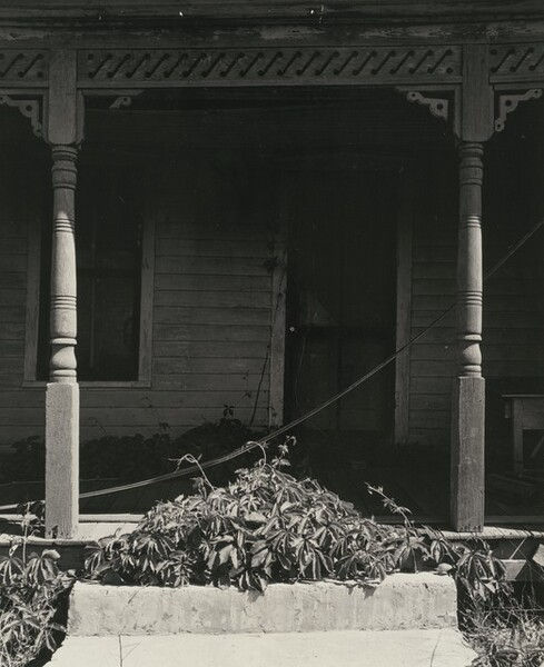 Porch with Vegetation