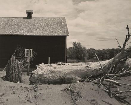 Fallen Tree in front of Barn