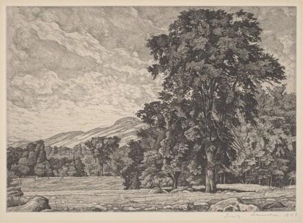 Stony Pasture