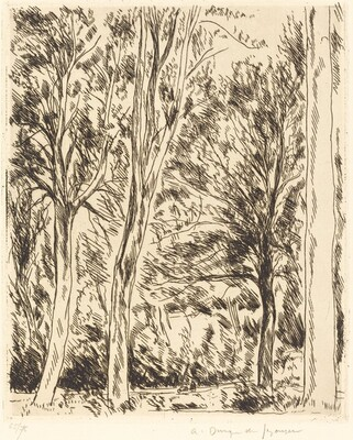 Forest at Chaville (Bois de Chaville)