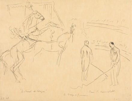 Performing Horses