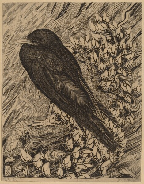 Bird (L'oiseau)