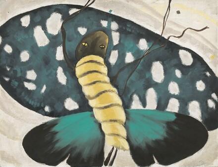 Moth Dance