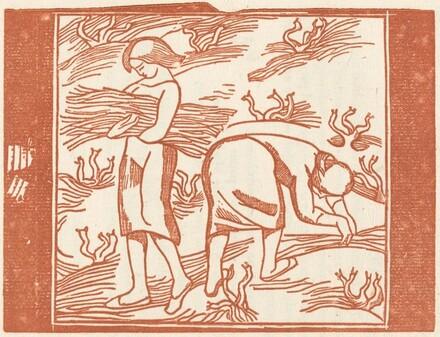 Women Harvesting (Jeunes filles ramassant dessarments de vigne: Deuxieme planche)