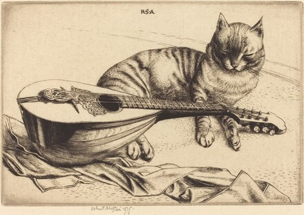 Cat and Mandolin