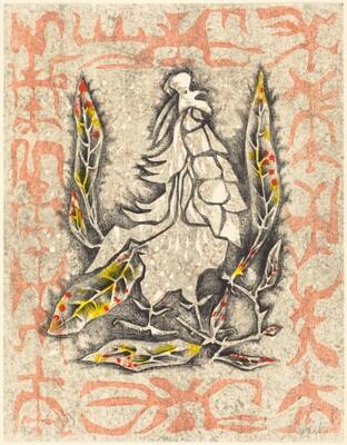 Masked Pheasant (Faisan masque)