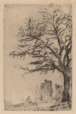 The Acacia (L'acacia)