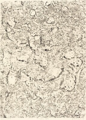 Inscriptions legeres