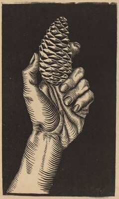 Hand with Fir Cone