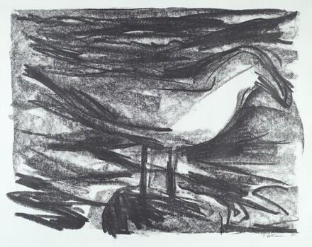 Sea Bird Saga VII