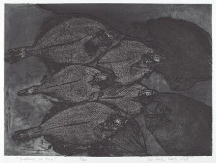 Shadows of Fish