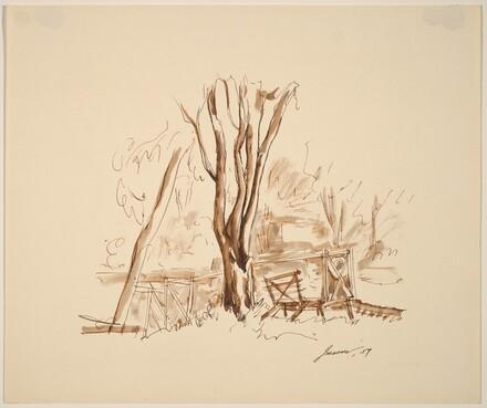 Trees, Bench, Walk