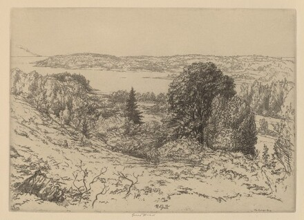 The Sylvan Sea