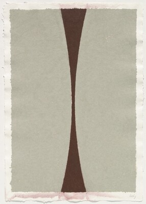 Colored Paper Image XI (Gray Curves with Brown)