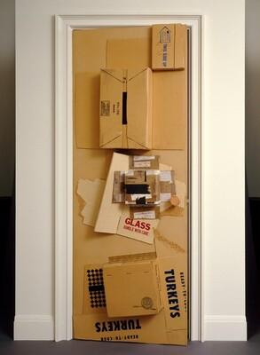 Cardbird Door
