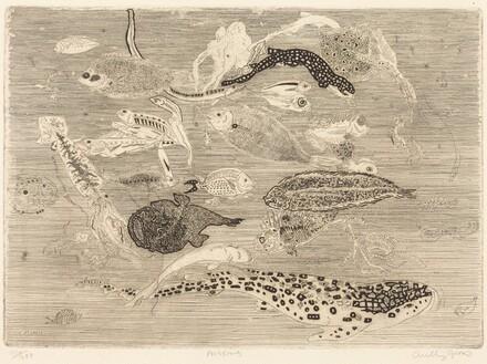 Poissons (Fish)