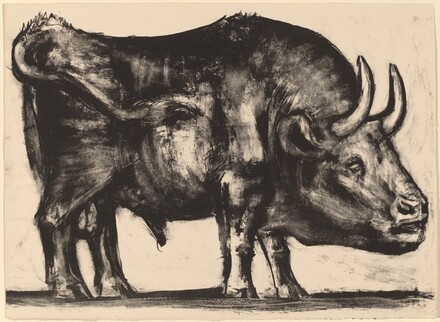 The Bull (Le taureau)