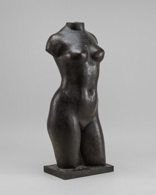Torso of a Young Woman